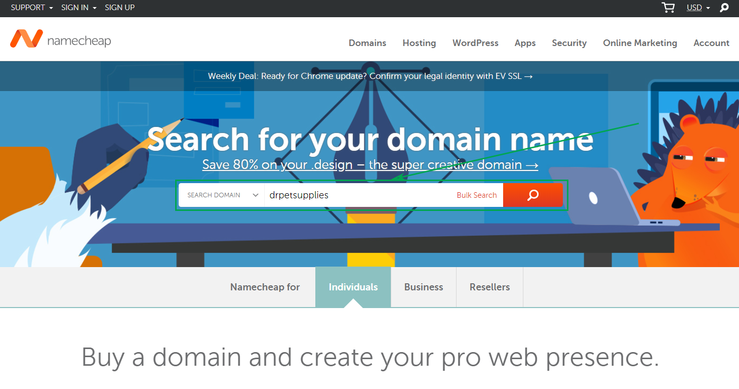 Picking a Domain Name - Search NameCheap